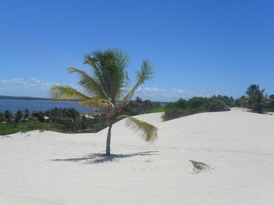 Mangue Seco Beach: Mangue Seco