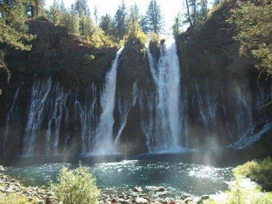 McArthur-Burney Falls Memorial State Park : Burney Falls