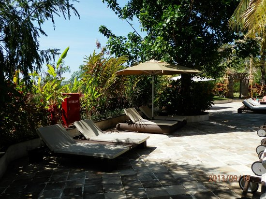 Swiss-Belhotel Segara Resort & Spa : Best pool chairs ever
