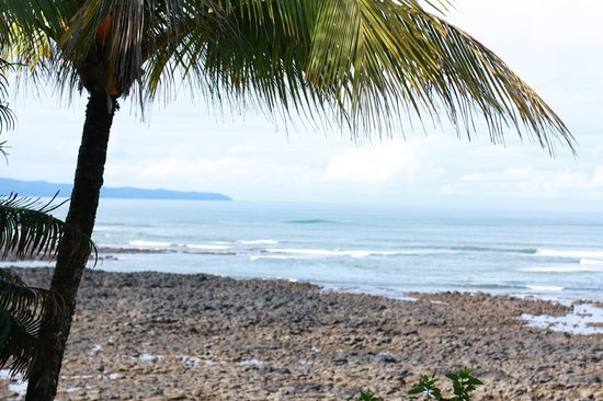 view - on the reef - santa catalina