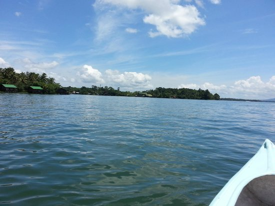 Catamaran Island Hotel: View from the kayak on the Rio