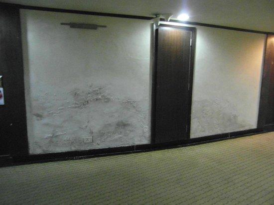 Centaur Hotel, IGI Airport: Pasillo entrada a la habitación.(Os ahorro las fotos del interior)