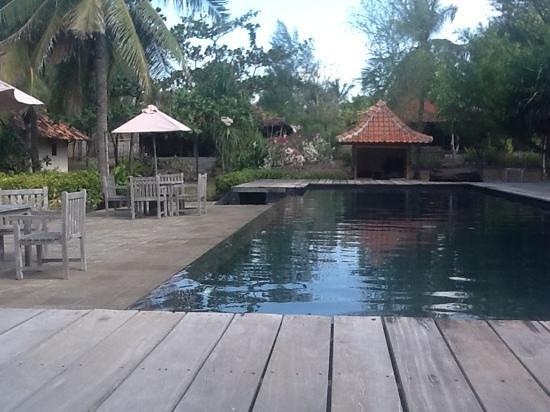 Desa Dunia Beda Beach Resort : la pisina frente al mar