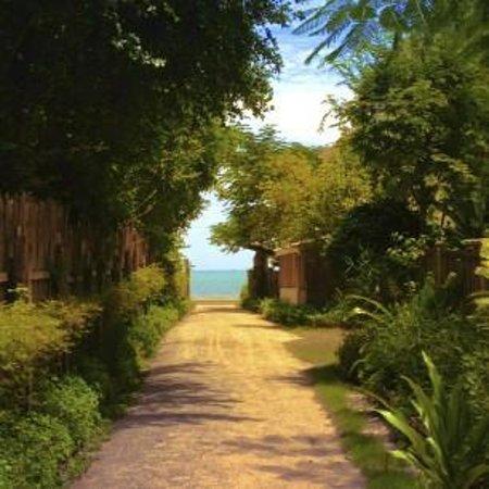 Brassiere Beach Resort: walk way to the beach