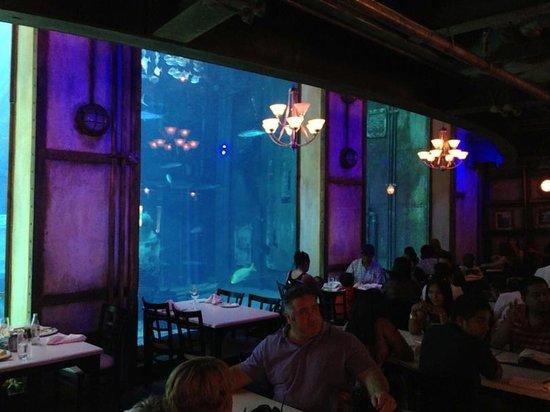 Cargo Hold Restaurant: World Class Atmosphere