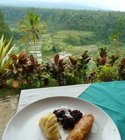 Lereng Agung: Vista desde la mesa