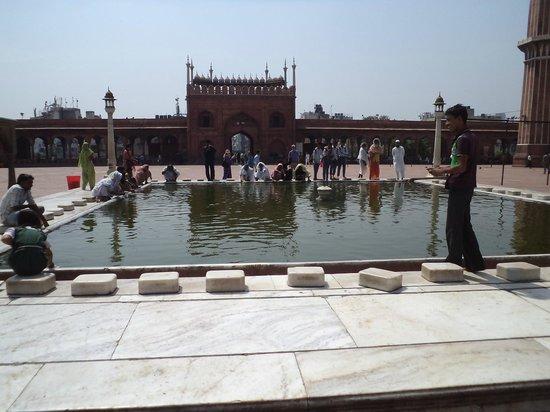 Friday Mosque (Jama Masjid): The bathing pond.