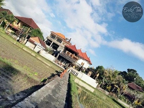 Bayu Guest House: A magnificent view from the edge of the paddy field