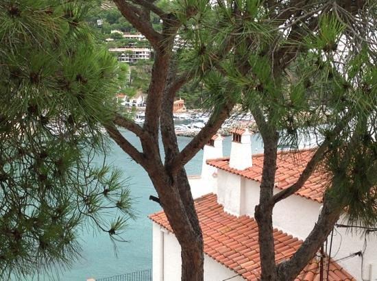 Casamar Hotel: vistas desde la habitación 214