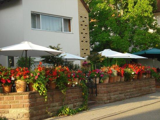 Hotel Hirsch : terras