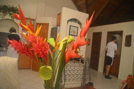 Hideaway Island Resort & Marine Sanctuary: Just a glimpse of inside