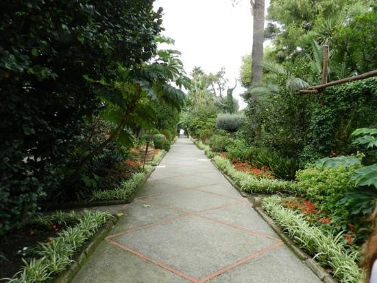 Grand Hotel Cocumella: the garden