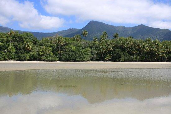 Cape Trib Camping : beautiful views at low tide