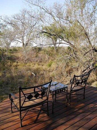 Hoyo-Hoyo Safari Lodge: balcony