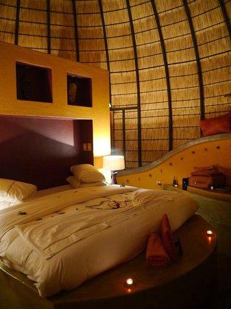 Hoyo-Hoyo Safari Lodge: room