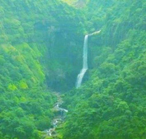 Green khandala