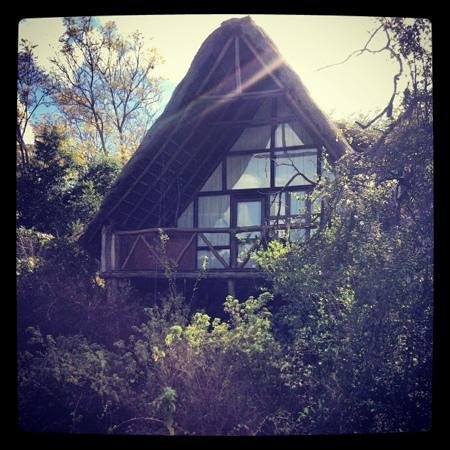 Ngong House: treehouse 3, with views of the Ngong Hills