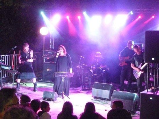 Domaine Des Chenes Verts: Soirée concert au camping