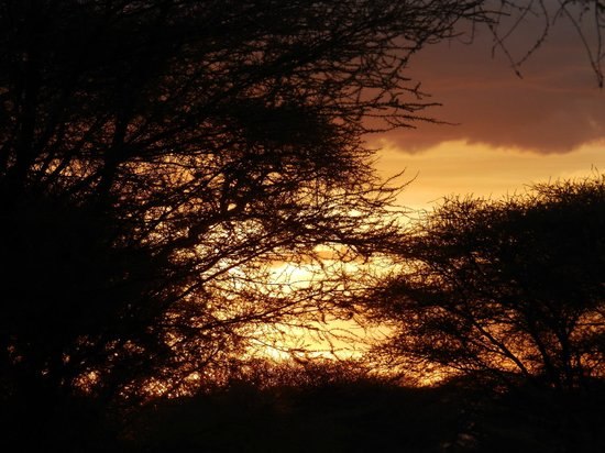 Kirurumu Tarangire Lodge: Beautiful sunset from the terrace