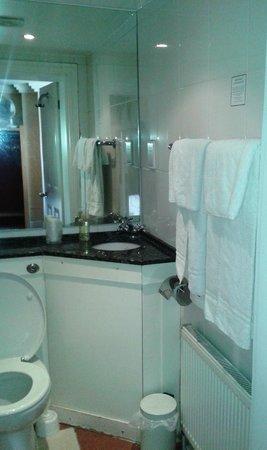 Shandon House Hotel: Bathroom