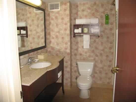 Hampton Inn & Suites Chicago North Shore/Skokie: Bathroom