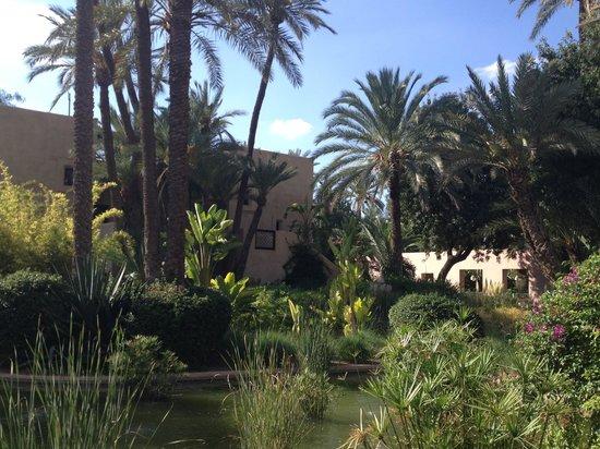 Club Med Marrakech le Riad : Les jardins du Riad