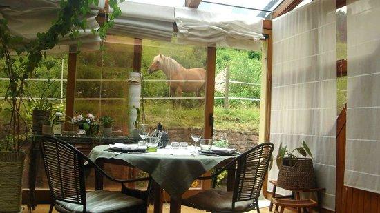 L'Atelier de Gisèle : La salle à manger