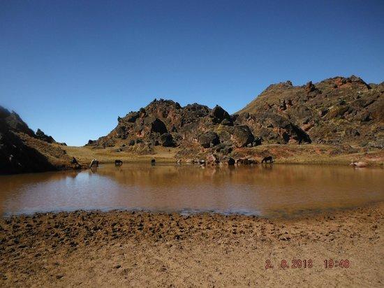 Hotel Pueblo Antiguo: On aimerait bien planter la tente dans ce coin .