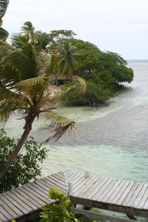 Pelican Beach - South Water Caye : view from Osprey's Nest