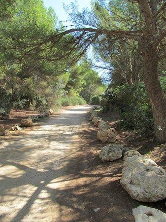 Punta Amer: beautiful walk