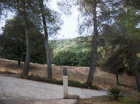 Acqua Dolce : Desde la puerta de nuestra habitación: empinada rampa de acceso y paisaje boscoso