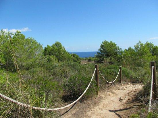 Punta Amer: keep to the paths