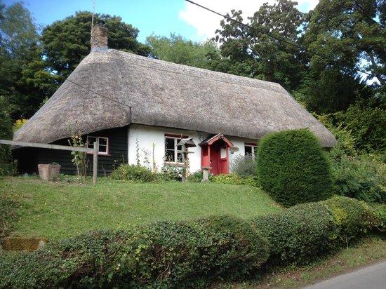 The White Lion Inn: House inthe village
