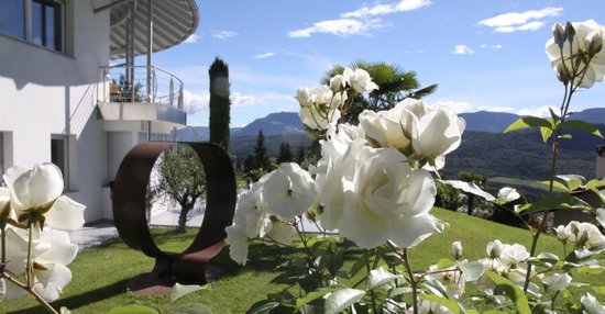 Garten und Liegewiese im Millenniumshof