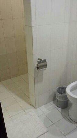 Hotel Durban: very clean restroom of 407