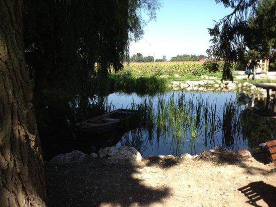 Zum Eulenspiegel: Fischteich vom Restaurant eigenen Bio Hof
