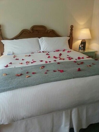 Chatham Bars Inn Resort and Spa: Deluxe king cottage bedroom (hubby asked for the rose pedals for our anniversary)