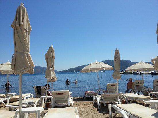 Club Palm Hotel : beach by hotel