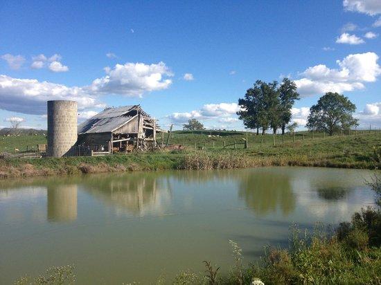 Watts Roost Vineyard: View of the beatiful lake and barn
