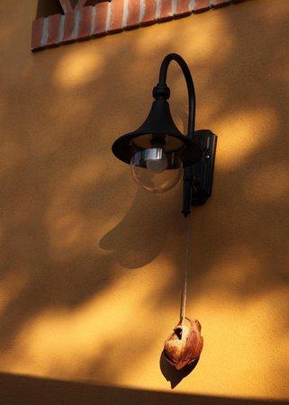 Agriturismo Sommavalle: Outside