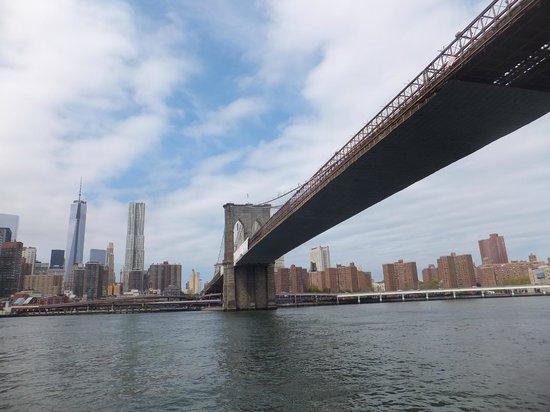 CitySights NY: brooklyn bridge from the boat