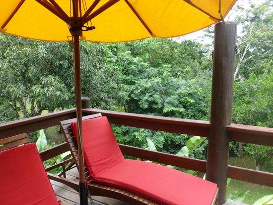 The Lodge at Chaa Creek: Aussicht von der Terasse des Zimmers