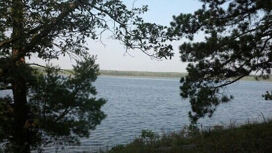 Clear Lake State Park: Grass Lake