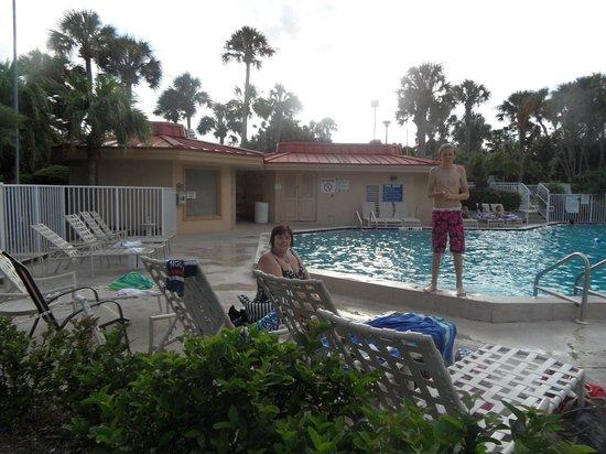 alligator alley picture of international palms resort. Black Bedroom Furniture Sets. Home Design Ideas