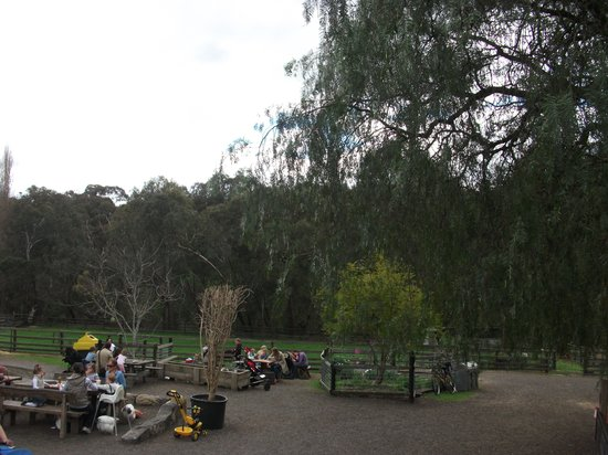 Collingwood Children's Farm: Perfect picnic - but watch out for those chickens!