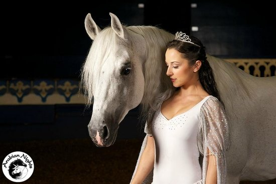Kissimmee, FL: Beautiful Princess Amirah & her horse