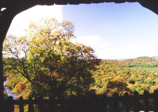 Swiss Cottage: The view from the Terrace
