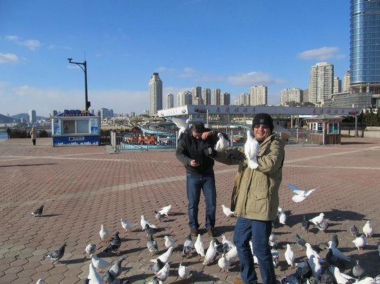 Friendship Square: Dalian