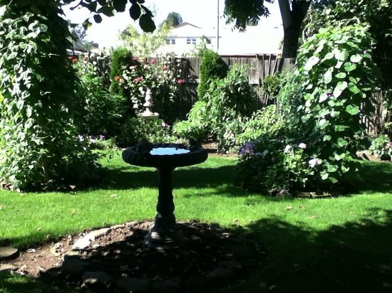 Birdwood Inn: lovely backyard  garden