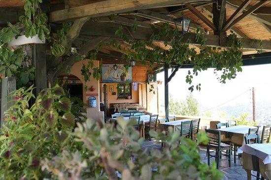 Flora Taverna : Flora Tavern